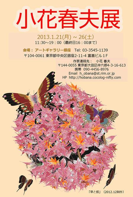 Dm_1000_20130117