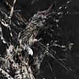 「失われた時」---「デジタル版画」展作品No.4
